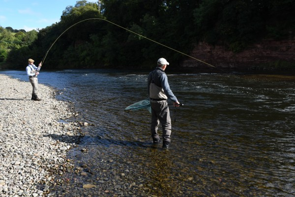 Fish on! River Tweed, Scotland